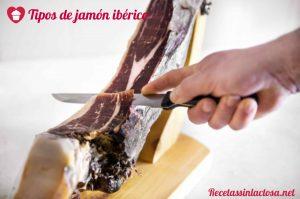 Clasificación de Jamones Ibéricos
